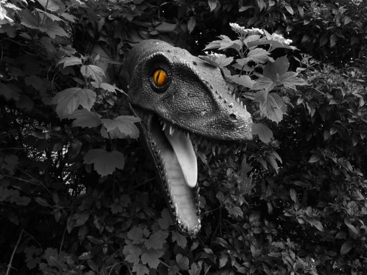 Dino BW