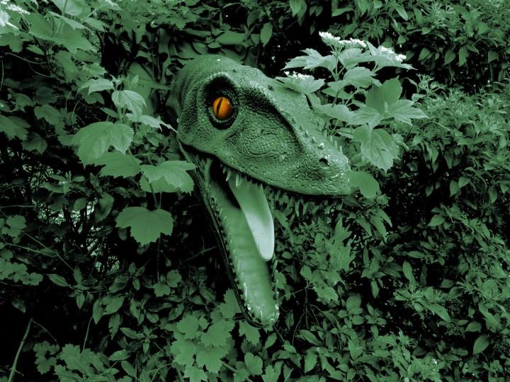 Dino Green Eye