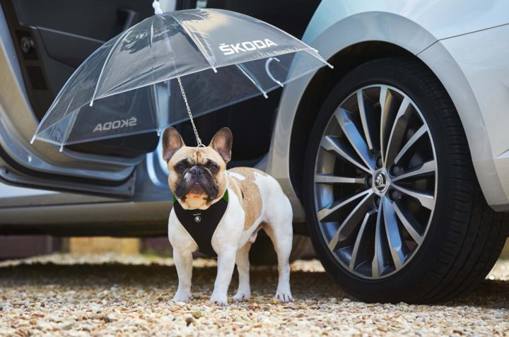 Skoda_Dog_Umbrella